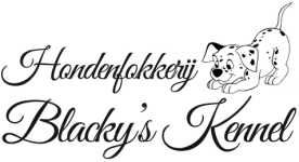 Logo Hondenfokkerij Blacky's Kennel - Puppy's Herselt