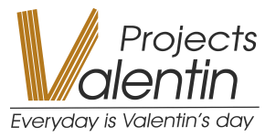 Logo Valentin Projects - Parketvloeren Aalst