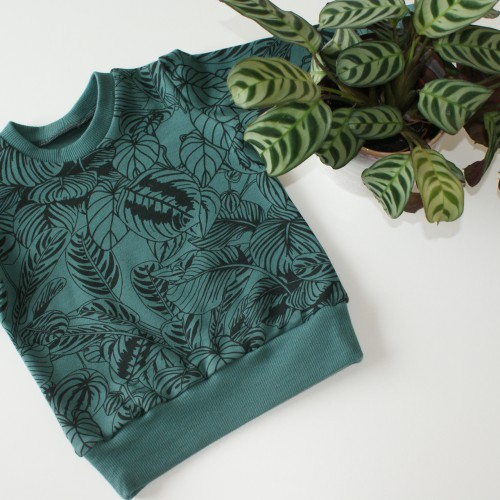 Sweater cosy house plants - maat 110 - 116